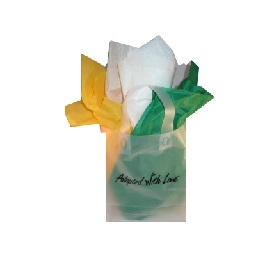 Frosted clear adoption gift bag with green, white and goldenrod tissue paper, ready for India adoption gifts
